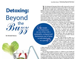 Detoxing Beyond the Buzz – Insight Australia (May 2010)