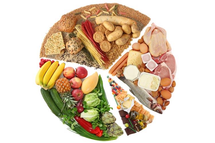 Nutrition Basics: A Mini Lesson in the Fundamentals