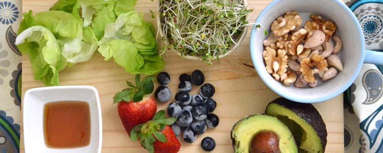 Vegan Protein Debate